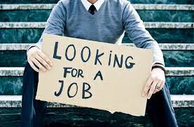 Tips to Get Government Jobs Easily – Follow These Tips
